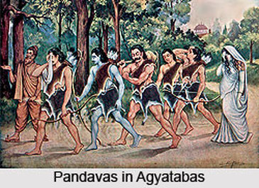 Pandavas with Draupadi in Exile